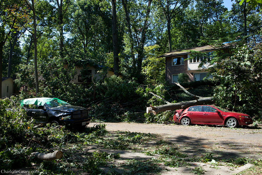 Storm damage after a derecho in Reston | Photo by Charlotte Geary