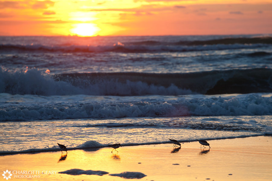 Sunrise at the beach  in Corolla, NC   Photo by Charlotte Geary