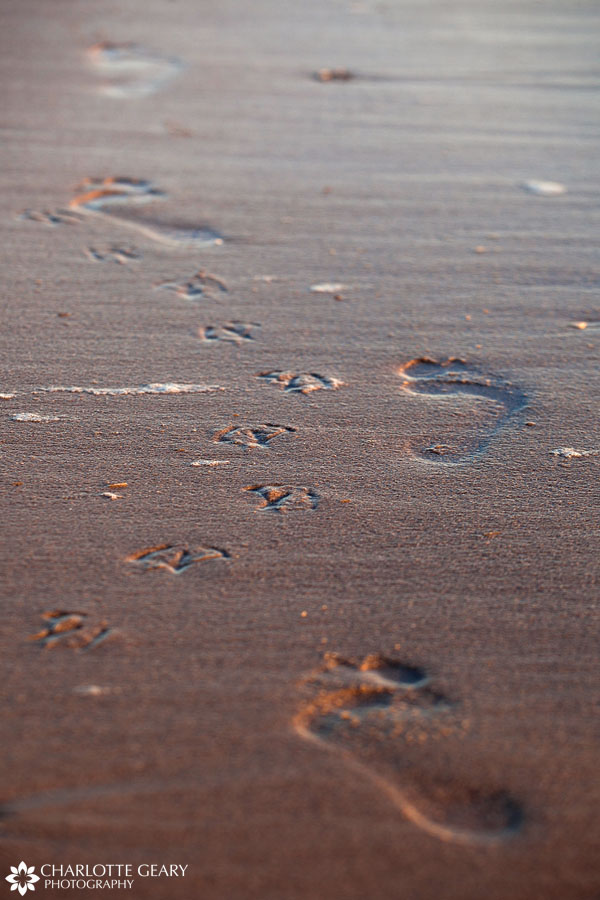Footprints in the sand in Corolla, NC   Photo by Charlotte Geary
