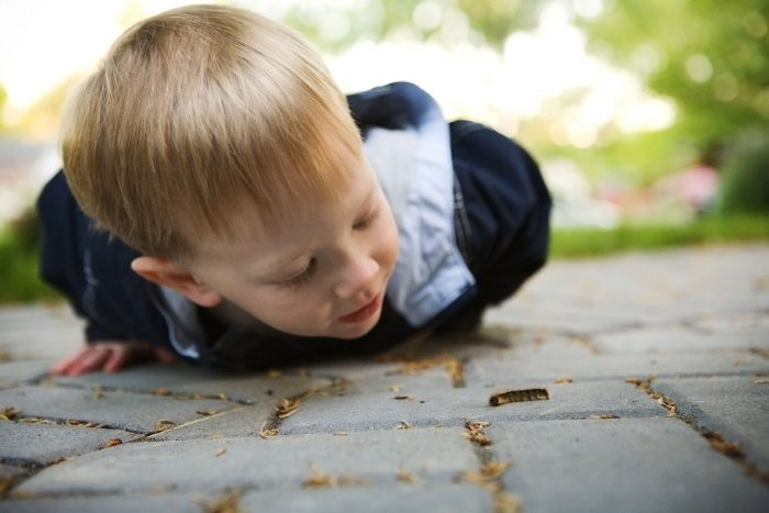 Documentary family photography of a boy with a caterpillar