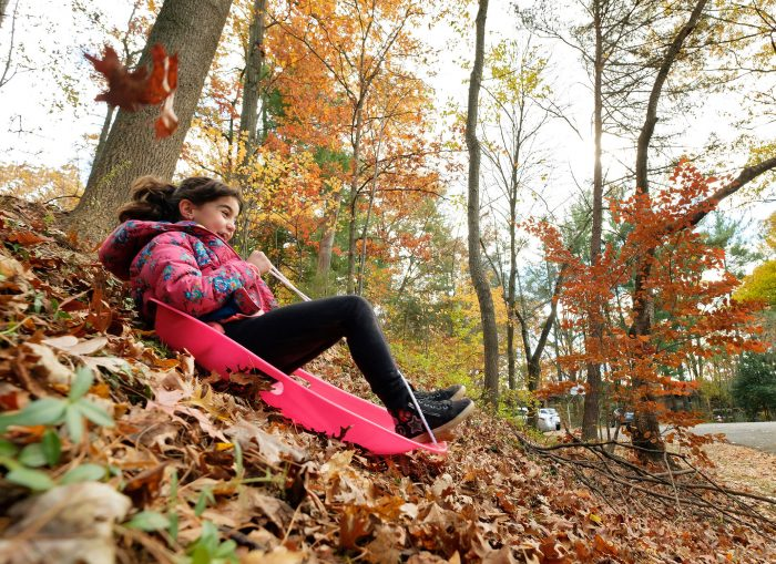 Documentary family photography of a girl playing in leaves