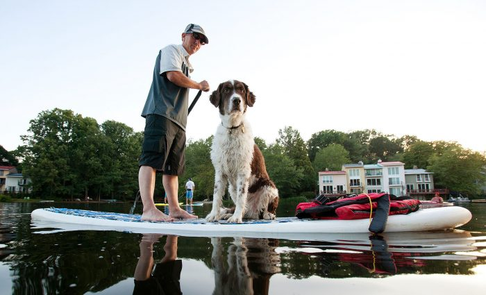 Paddleboarder and dog on SUP in Reston, Virginia