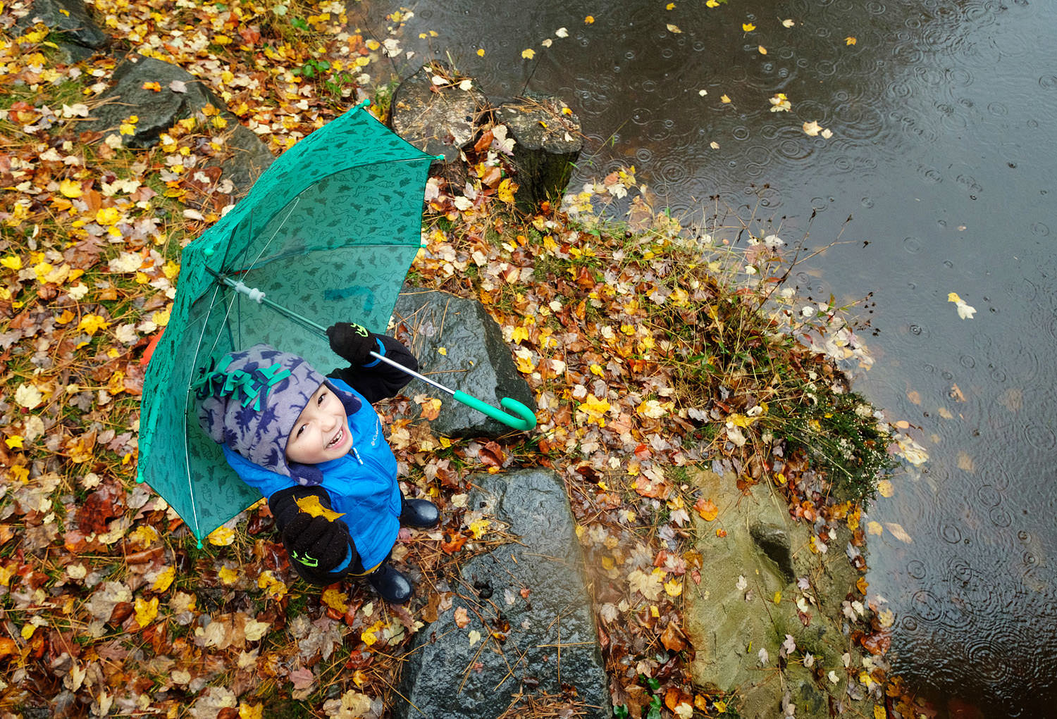 Boy with umbrella and fall leaves in the rain