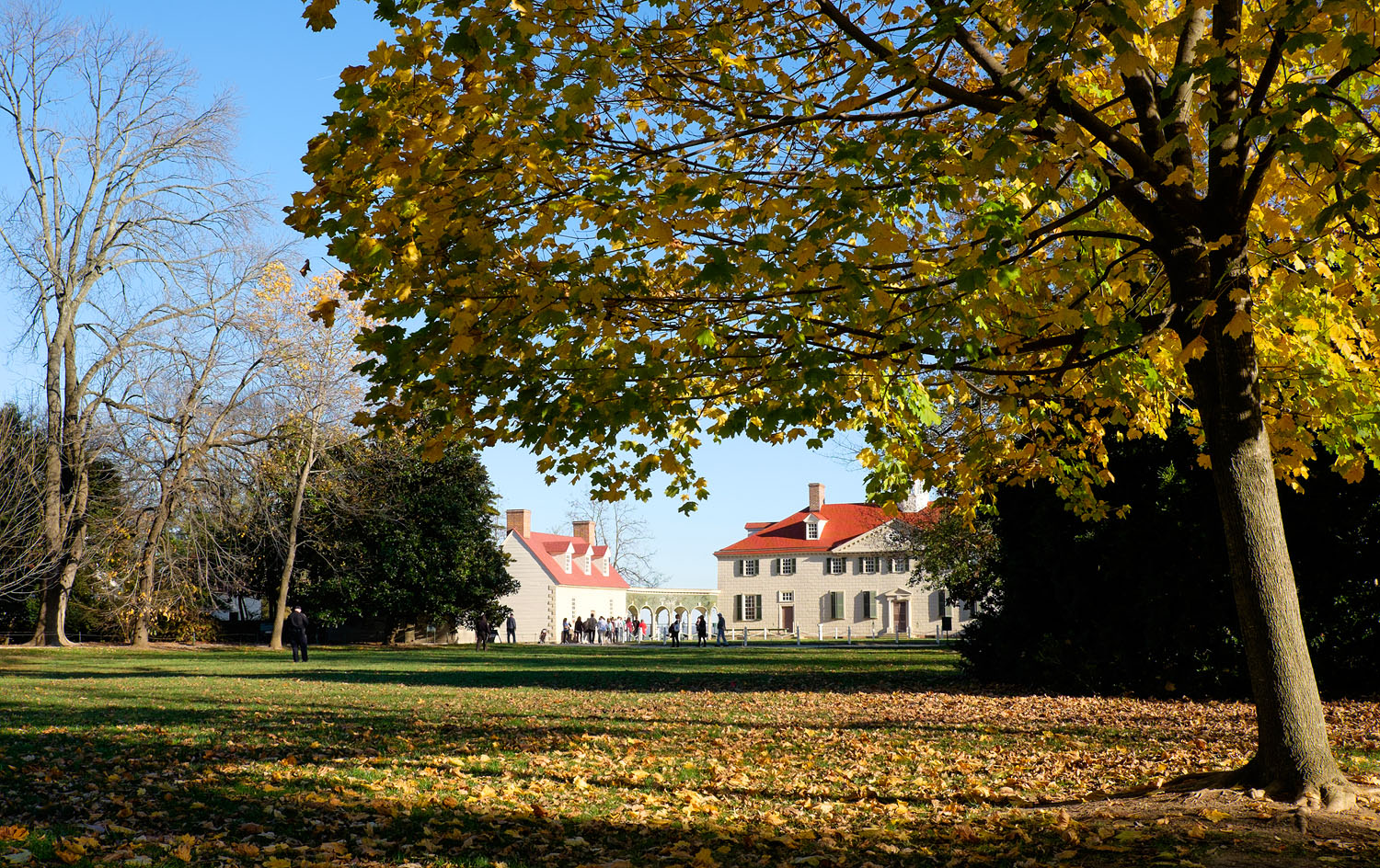 Mount Vernon in the fall