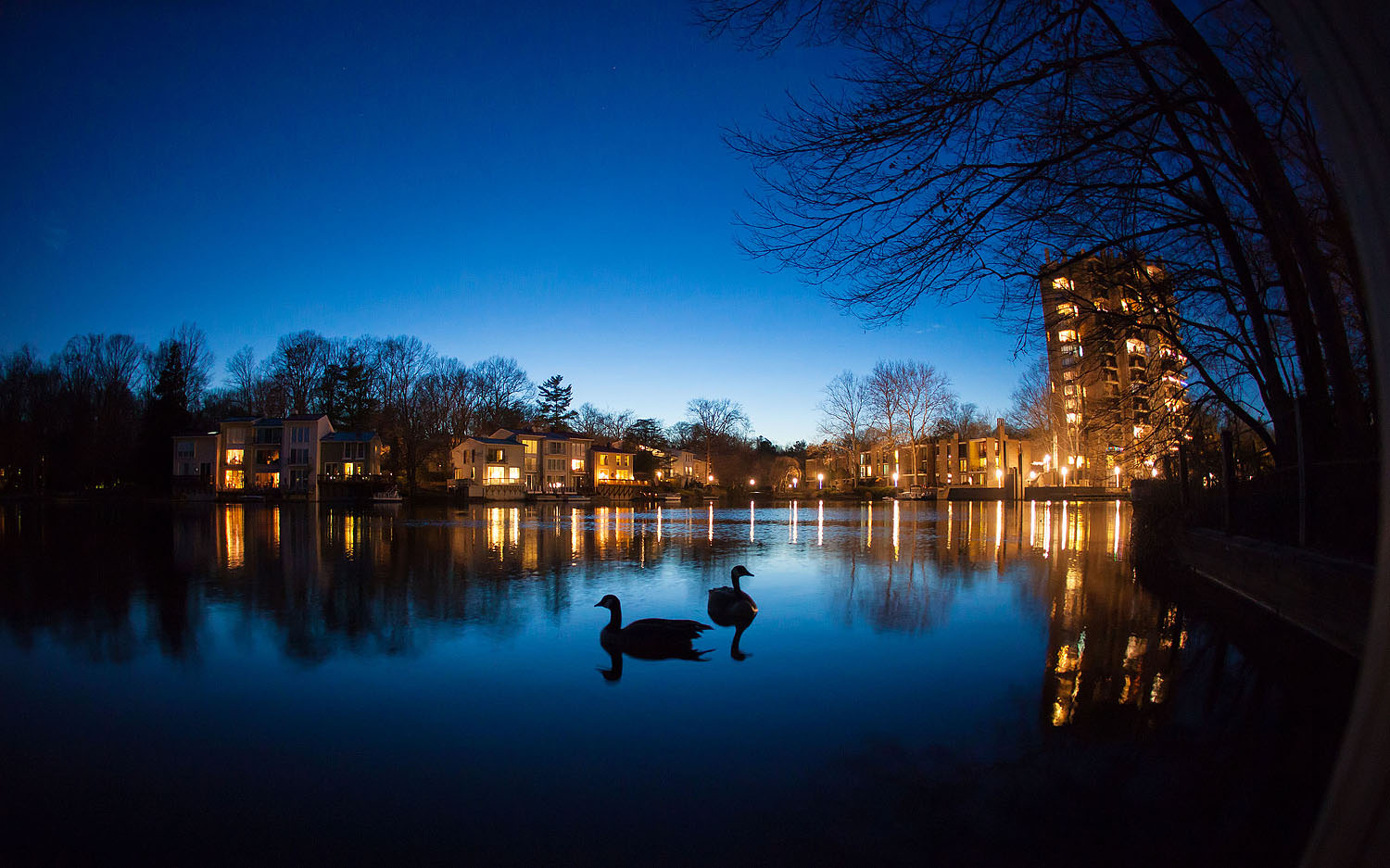 Lake Anne at night | Reston, Virginia