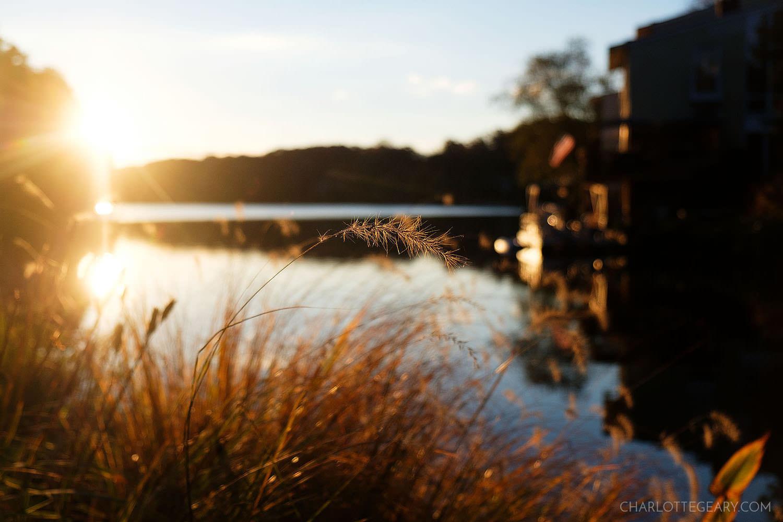 Sunrise at Lake Anne in Reston, Virginia
