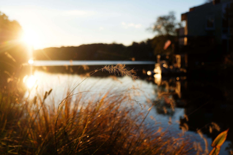 Lake Anne at sunrise       Reston, Virginia