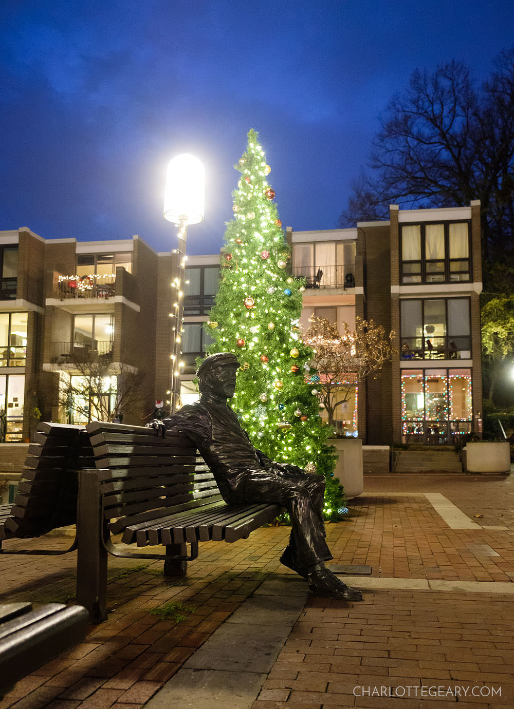 Lake Anne Plaza Christmas tree and Bronze Bob