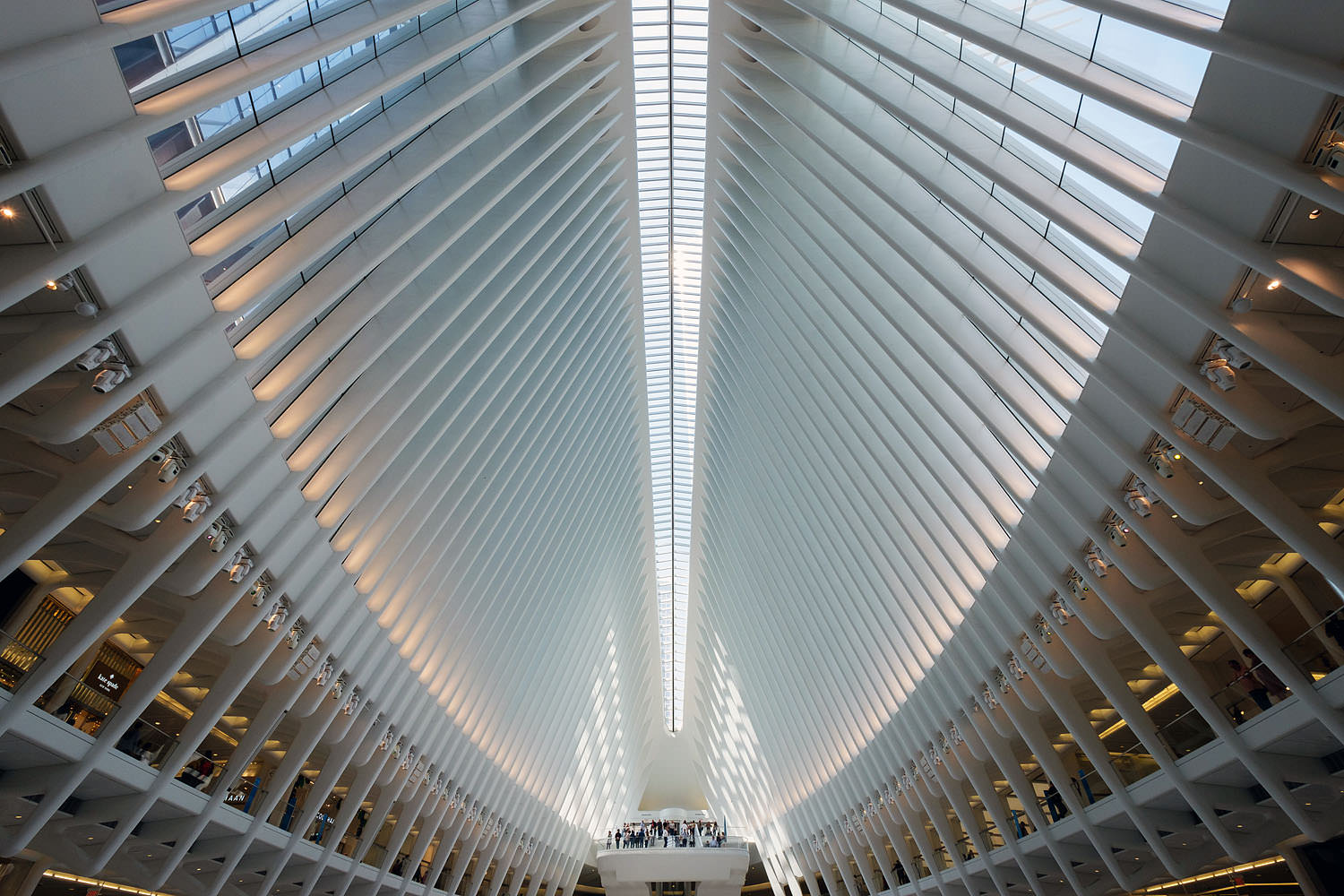 Inside the Oculus at World Trade Center Transportation Hub