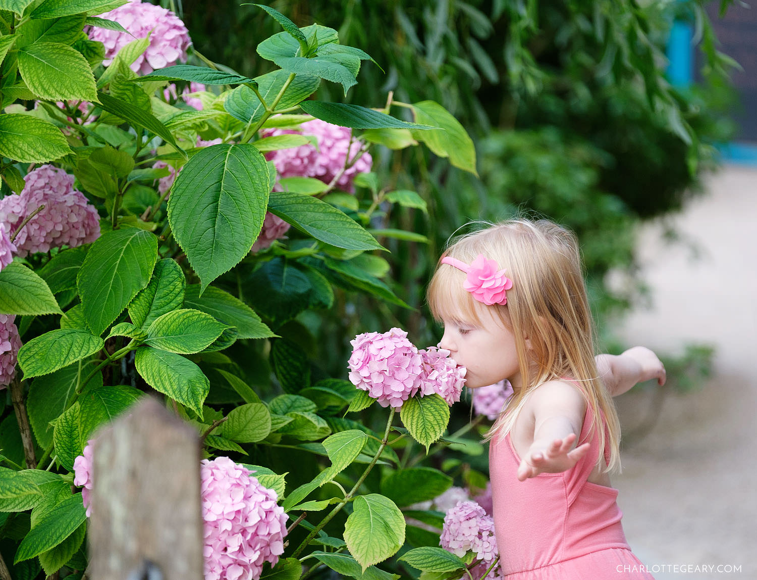 Little girl with hydrangeas