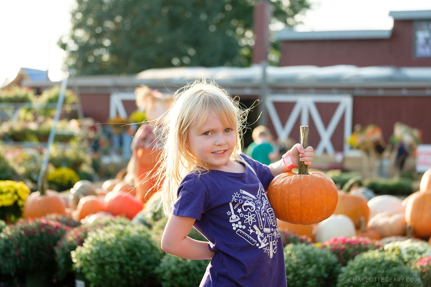 Reston Farm Market fall festival