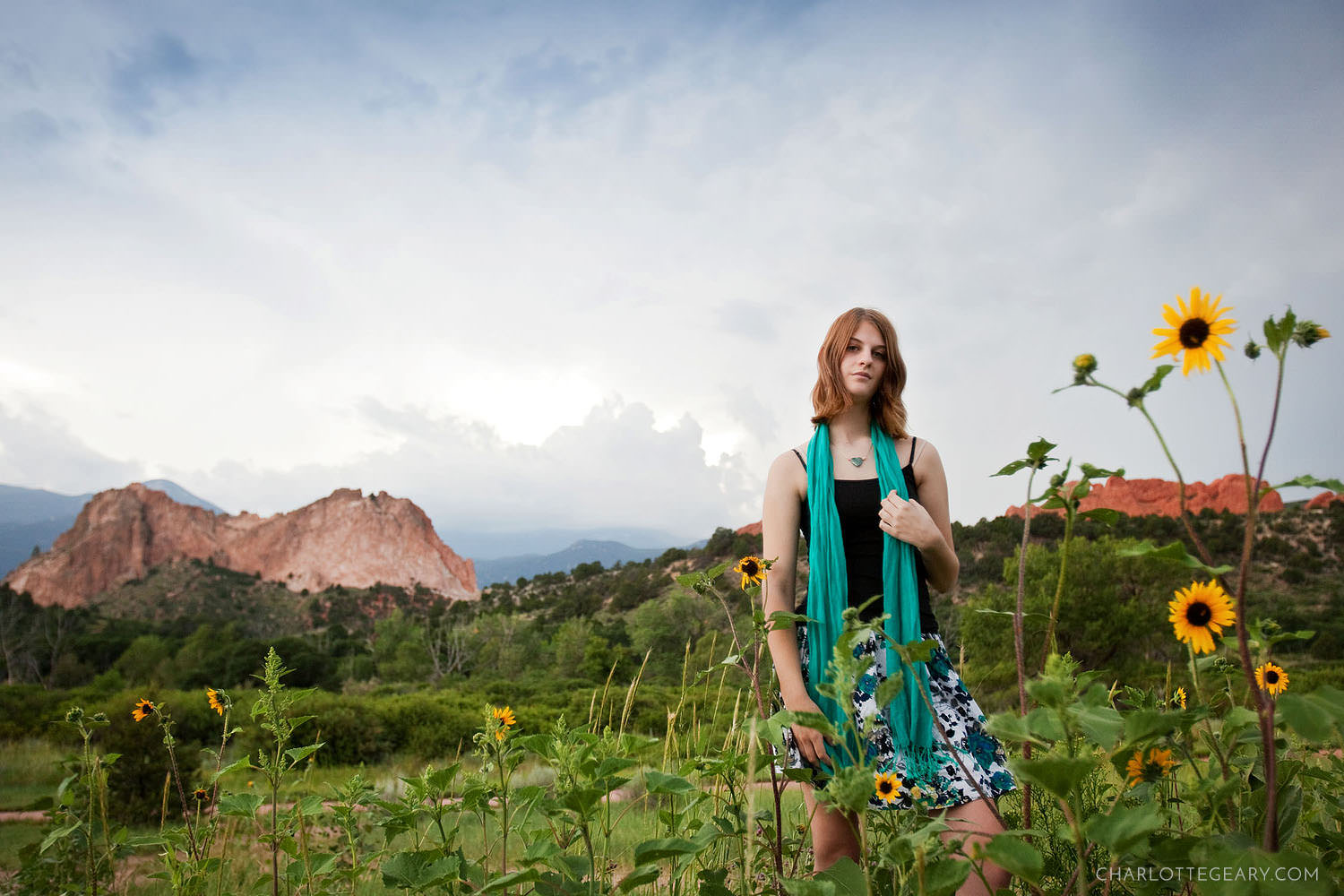 Garden of the Gods portrait in wildflowers