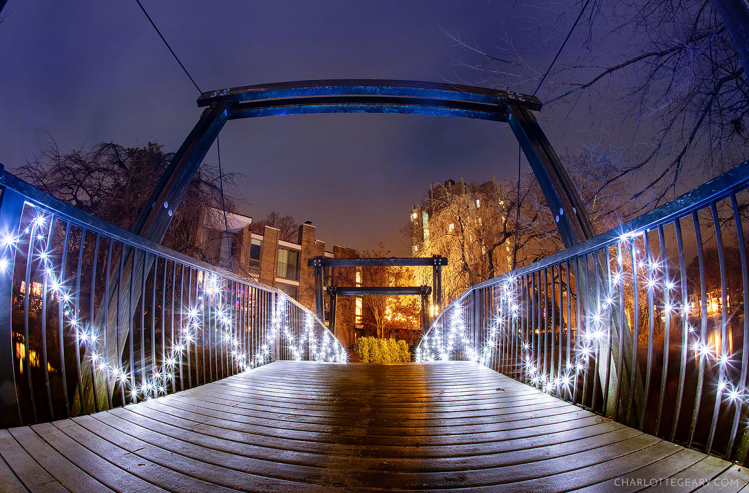 The Christmas lights at the Van Gogh Bridge at Lake Anne (Reston, Virginia)