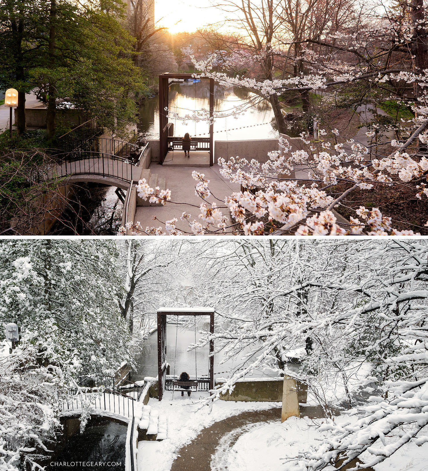 Lake Anne canal swing in different seasons