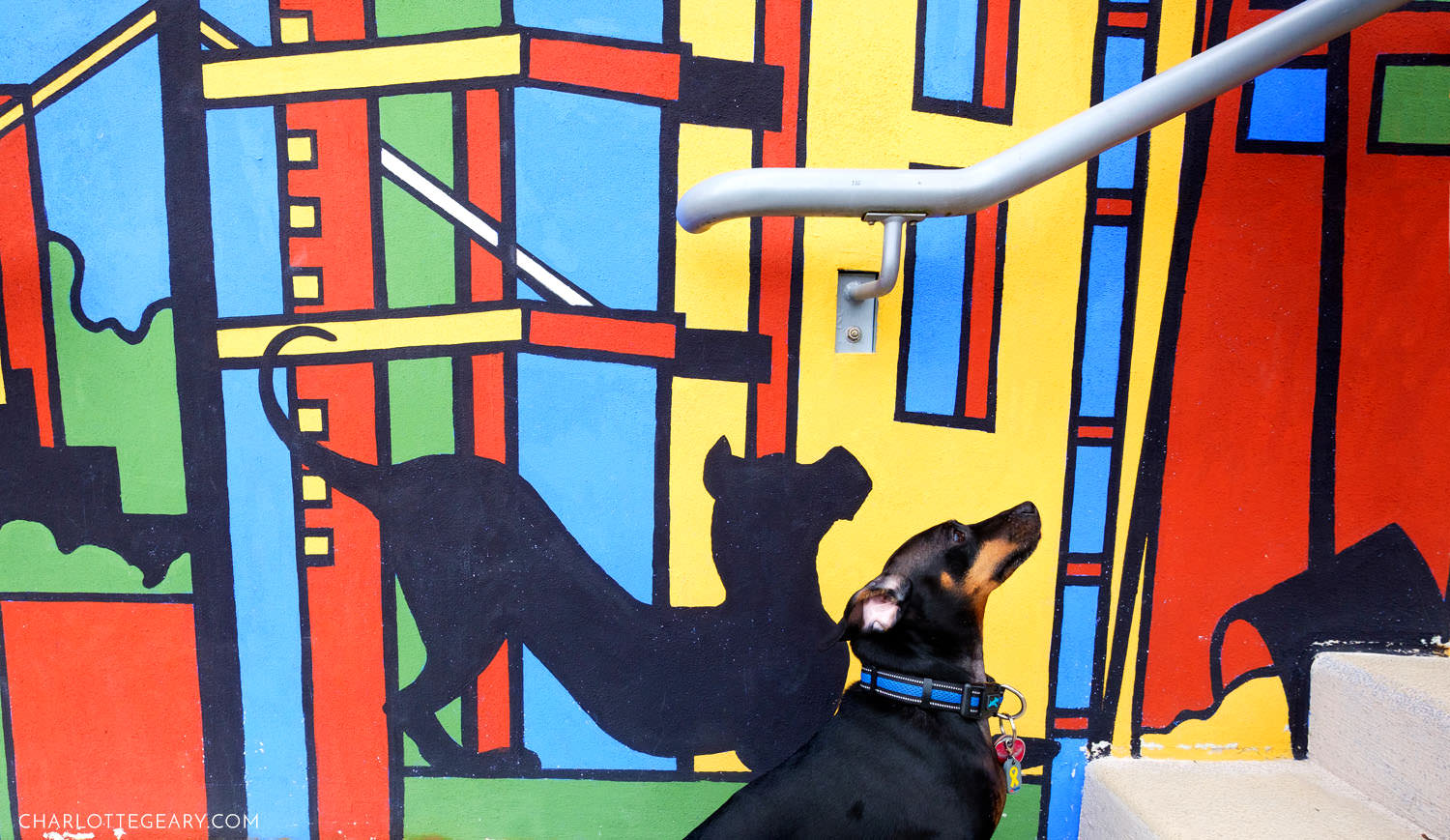 dog at the Midtorn Community Mural in Reston Town Center
